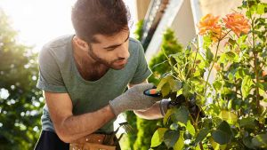 flower cutting is a type of green waste