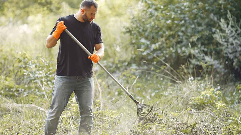 Man keeping the garden clean