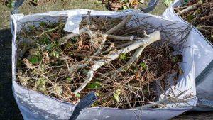 Garden waste in a back